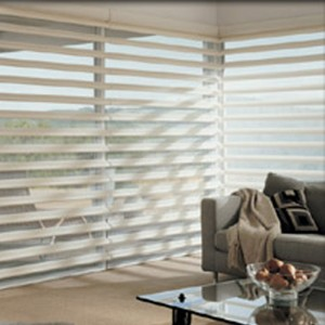 Hunter Douglas Pirouette Custom Blinds in Waterloo